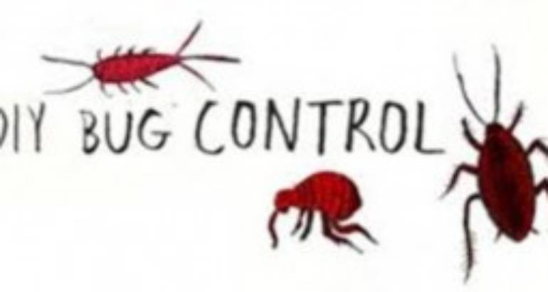 A new Do-It-Yourself Help guide Pest Control London Ontario